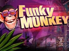 Funky Monkey – виртуальный аппарат от компании Playtech